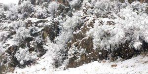 بارش برف روستای گنک