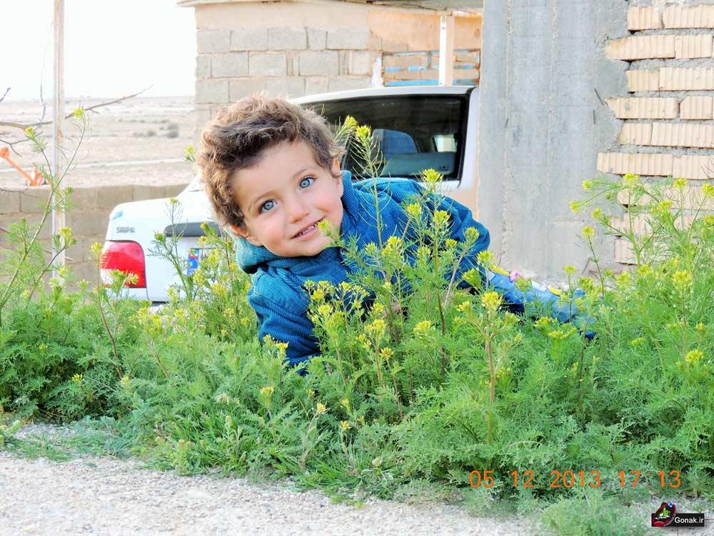 Photo of تصاویر بیادماندنی 1
