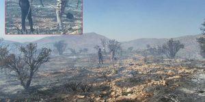 دهیار و مردم روستای گنک و همکاری در مهار آتش